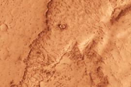 فيل على المريخ
