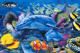 والأسماك تغرق أيضا !